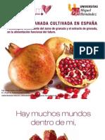 Libro de Granada