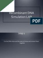 recombinant dna lab