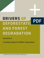 Drivers Deforestation Report