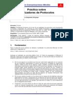 G12 P1 Pract Analizador