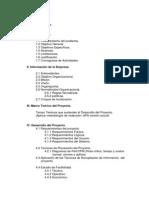 Estructura Del Contenido Del Trabajo 2013