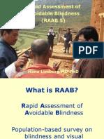 Rapid Assessment of Avoidable Blindness_Hans Limburg_16Sept2013