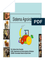 3 Sistema Agroindustrial 1