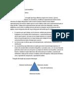 Psicoterapia Expresiva y de Apoyo (24!10!2012)