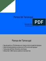 04.-Pampa Del Tamarugal