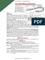 Bio-logy _unit 6 Detailed Study of Earthworm