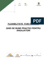 Ghid Bune Practici  Angajatori
