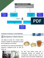 IV. Producao de Alimentos e Sustentabilidade I - Microrganismos e Industria Alimentar I - Fermentacao