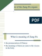 (4) Zang Fu Organs