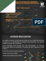 Eq 3. ARN y Proteinas