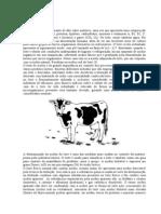 DETERMINAÇÃO DA ACIDEZ REAL DO LEITE (ACIDEZ DORNIC)