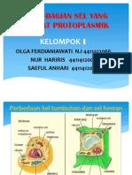 Bagian-bagian Sel Yang Bersifat Protoplasmik