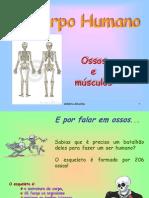 os_ossos