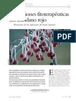 aplicacionsfitoterapeuticasdelarandanorojo-120221165557-phpapp01