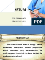 Post Partum sc