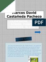 Marcos David Castañeda Pacheco