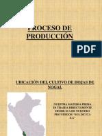 POWER DE PRODUCCION DE NOGAL22222222222.ppt