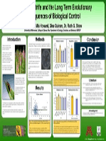 Purple Loosestrife Poster