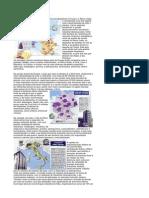 As-principais-areas-industriais-da-europa.pdf