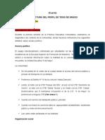 Perfil de Tesis Avansamos Ya Algo-1