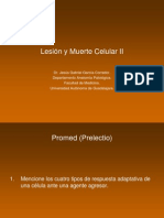 Tema 2 Lesión y Muerte Celular II