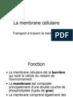 1.4 La Membrane Cellulaire
