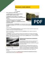 Fotosíntesis y medio ambiente