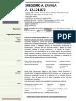 CV Gregorio Zavala (Actualizado 11 Agosto 2013)