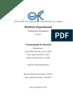 Relatorio - Cormatografia por adsorção (final).pdf