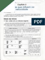 SARDELLA_2_3_CAP-2 - Fatores Que Influem Na Velocidade