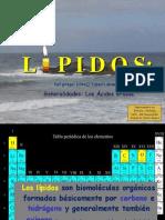 lpidos08def-1229129030562522-1