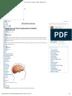 Infomación - Síndrome de Post Conmoción Cerebral