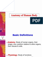 Anatomy & Physiology - NEW