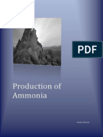 productionofammonia-100923182507-phpapp02