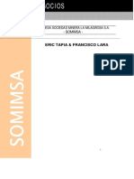 t 030 Cons Plan Negocio SOMIMSA