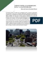 Ensayo_Vulnerabilidad Ambiental_Ma. Del Carmen E.a.