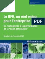 Enquete BFR Ernst&Young