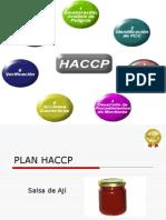 HACCP Lineamientos Generales 1 Interesante