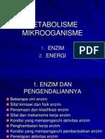 biokimia sistem enzim