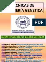 Ingenieria Genetica 2010BARCELOTEORICO4
