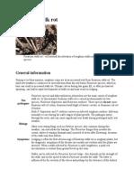 Fusarium Stalk Rot21