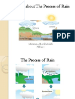Explanation About the Process of Rain