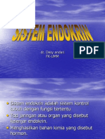 endokrin 1