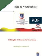 Neuro Patologia