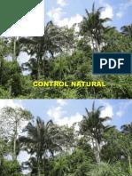 5 - Control Natural