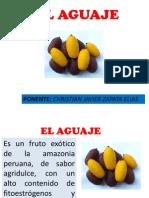 EL AGUAJE