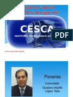 Separata_El Régimen Laboral Privado en el Siglo XXI