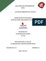 Informe FINAL EVA 10711166 Con Recomendaciones