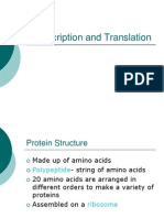 transcription and translation power point