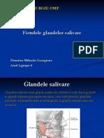 FISTULELE GLANDELOR SALIVARE